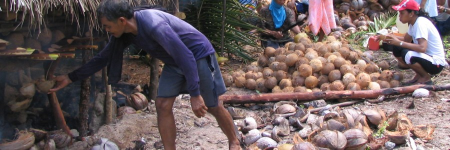 Livelihood through coconut oil